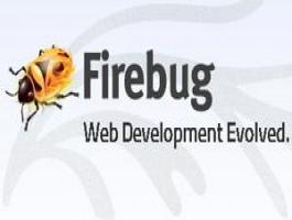 آشنایی و آموزش فایرباگ